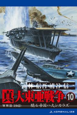 真・大東亜戦争(10)-電子書籍