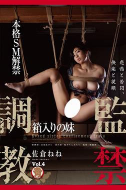 【巨乳】監禁調教 Vol.4 / 佐倉ねね-電子書籍
