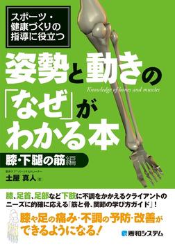 スポーツ・健康づくりの指導に役立つ 姿勢と動きの「なぜ」がわかる本 膝・下腿の筋編-電子書籍