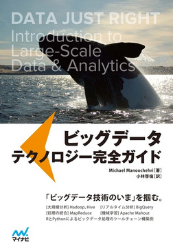 ビッグデータ テクノロジー完全ガイド-電子書籍
