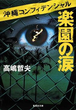 沖縄コンフィデンシャル 楽園の涙-電子書籍