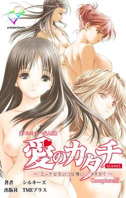 【フルカラー成人版】愛のカタチ~エッチな女の子は嫌い…ですか?~ Scene1 Complete版-電子書籍