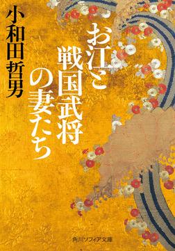 お江と戦国武将の妻たち-電子書籍