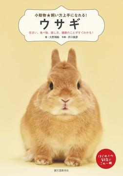 ウサギ-電子書籍