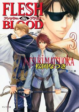 FLESH & BLOOD3-電子書籍