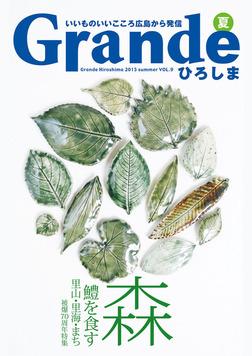 Grandeひろしま Vol.9-電子書籍
