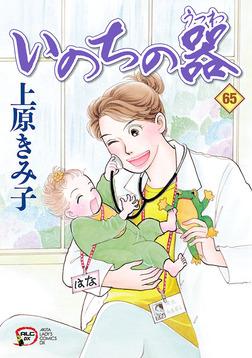 いのちの器 65-電子書籍