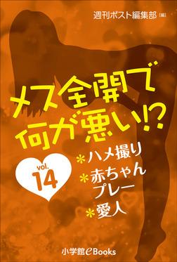 メス全開で何が悪い!? vol.14~ハメ撮り、赤ちゃんプレー、愛人~-電子書籍
