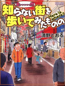 全っっっっっ然知らない街を歩いてみたものの-電子書籍