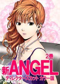 新ANGEL ディレクターズカット カラー版 2巻
