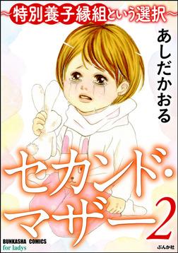 セカンド・マザー~特別養子縁組という選択~ 2-電子書籍