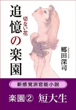 追憶の楽園 切ない花/楽園2.短大生-電子書籍