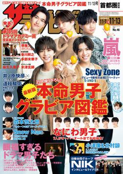 ザテレビジョン 首都圏関東版 2020年11/13号-電子書籍