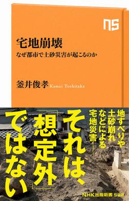 宅地崩壊 なぜ都市で土砂災害が起こるのか-電子書籍