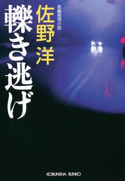 轢(ひ)き逃げ-電子書籍