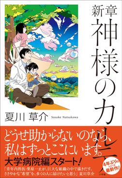 新章 神様のカルテ-電子書籍