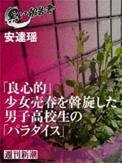 「良心的」少女売春を斡旋した男子高校生の「パラダイス」-電子書籍