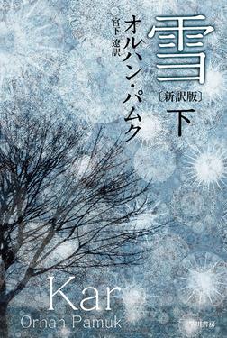 雪〔新訳版〕 下-電子書籍