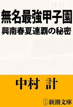 無名最強甲子園―興南春夏連覇の秘密―-電子書籍