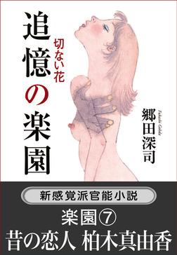 追憶の楽園 切ない花/楽園7.昔の恋人-電子書籍