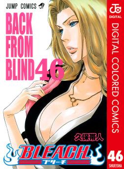 BLEACH カラー版 46-電子書籍