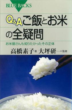 Q&A ご飯とお米の全疑問 お米屋さんも知りたかったその正体-電子書籍