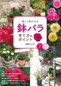美しく咲かせる 鉢バラ 育て方のポイント