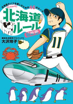 北海道ルール 最新版-電子書籍