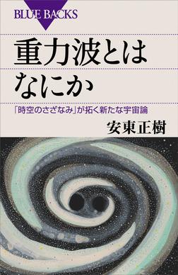 重力波とはなにか 「時空のさざなみ」が拓く新たな宇宙論-電子書籍