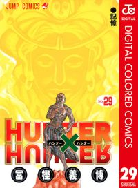 HUNTER×HUNTER カラー版 29