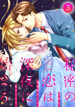 秘密の恋は、深夜に始まる~冷徹な乗務員さんに魅せられて~【分冊版】 3話-電子書籍