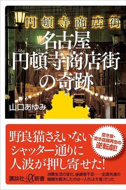 名古屋円頓寺商店街の奇跡-電子書籍