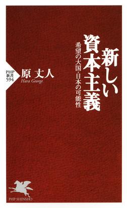 新しい資本主義 希望の大国・日本の可能性-電子書籍