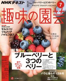 NHK 趣味の園芸 2018年7月号-電子書籍