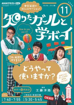 NHKテレビ 知りたガールと学ボーイ 2020年11月号-電子書籍