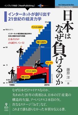 日本はなぜ負けるのか【新版】 インターネットが創り出す21世紀の経済力学-電子書籍