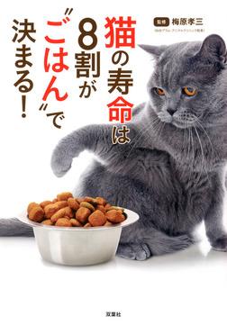 """猫の寿命は8割が""""ごはん""""で決まる!-電子書籍"""