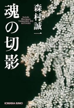 魂の切影(せつえい)-電子書籍