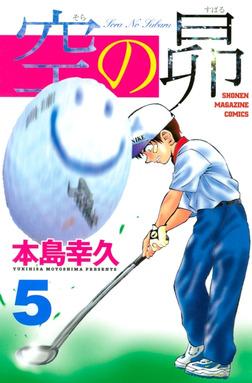 空の昴(5)-電子書籍