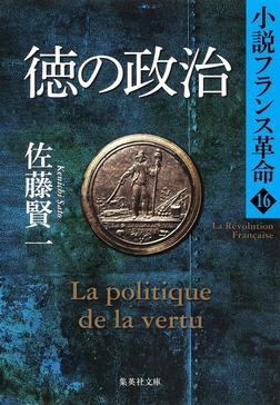 徳の政治 小説フランス革命16-電子書籍