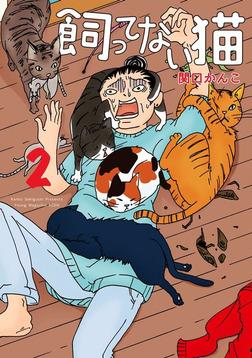 飼ってない猫(2)-電子書籍