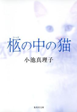 柩の中の猫-電子書籍