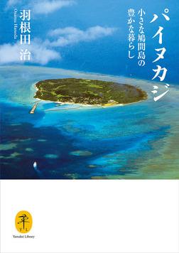 ヤマケイ文庫 パイヌカジ 小さな鳩間島の豊かな暮らし-電子書籍