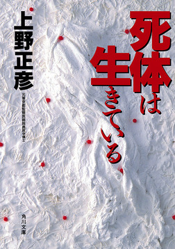 Winter tokyo in novel ebook