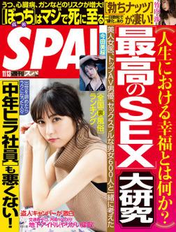 週刊SPA!(スパ) 2018年 11/13 号 [雑誌]-電子書籍