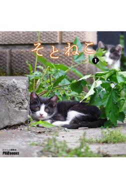 そとねこ VOL.01-電子書籍