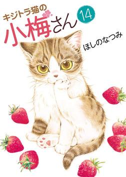 キジトラ猫の小梅さん / 14-電子書籍