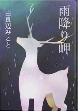 雨降り岬-電子書籍