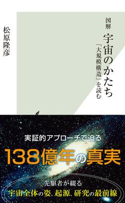 図解 宇宙のかたち~「大規模構造」を読む~-電子書籍