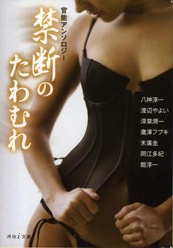 禁断のたわむれ-電子書籍